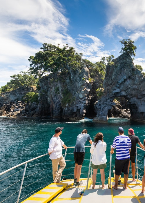 Moutohorā: Island Sanctuary
