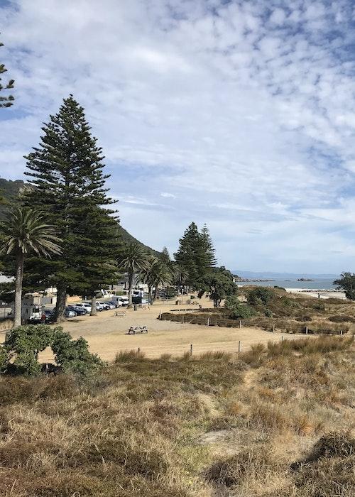 3hr Tauranga Sun-downer History Tour