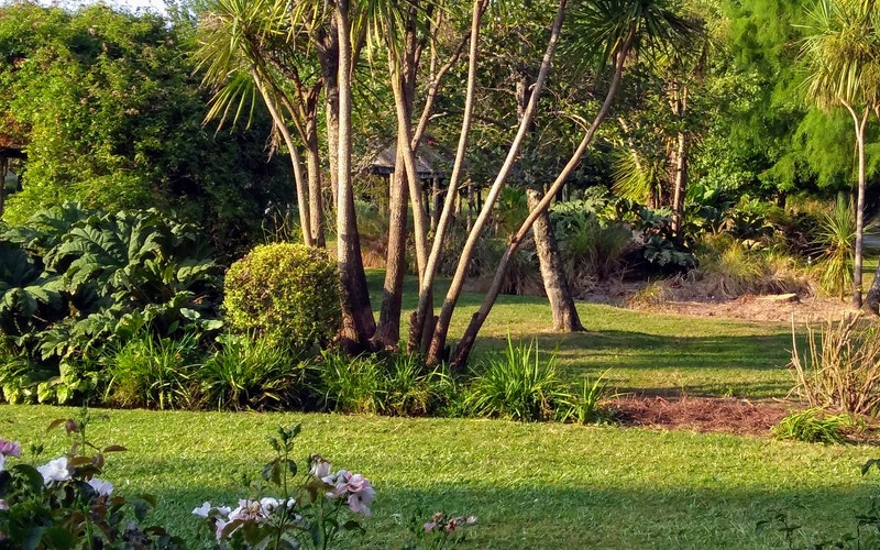 Part of the gardens.