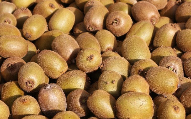Kiwifruit Country