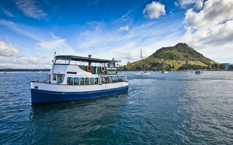 Kewpie Cruises - Scheduled One Hour Scenic Harbour Cruise
