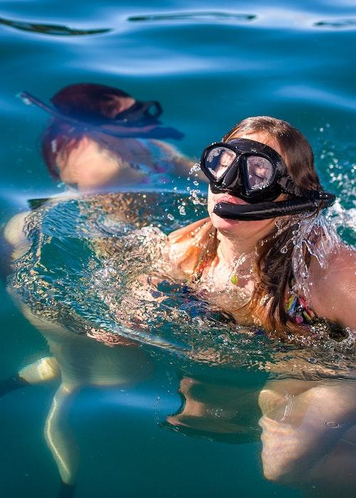 Snorkeling 1/2 - Full Day Wildside Adventures