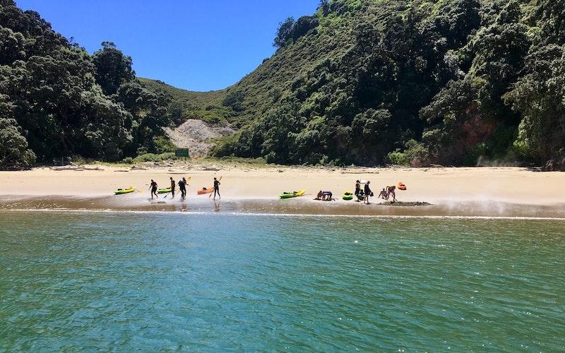 The hot water beach at Onepu , Moutohorā / Whale Island