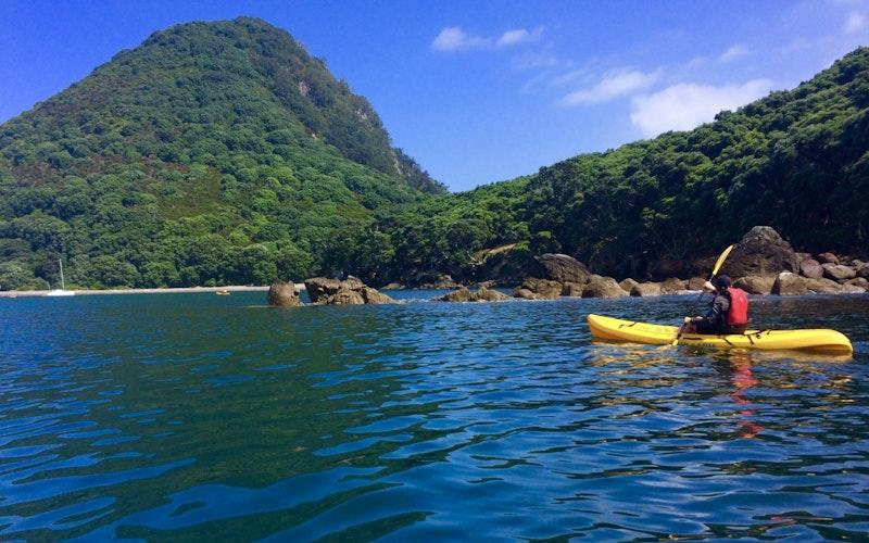 Beautiful Moutohorā / Whale Island