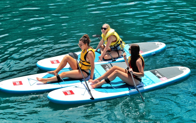 Bay Explorer - Island and Wildlife Cruise
