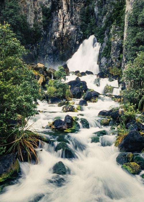 Wildside  Waterfall Walk