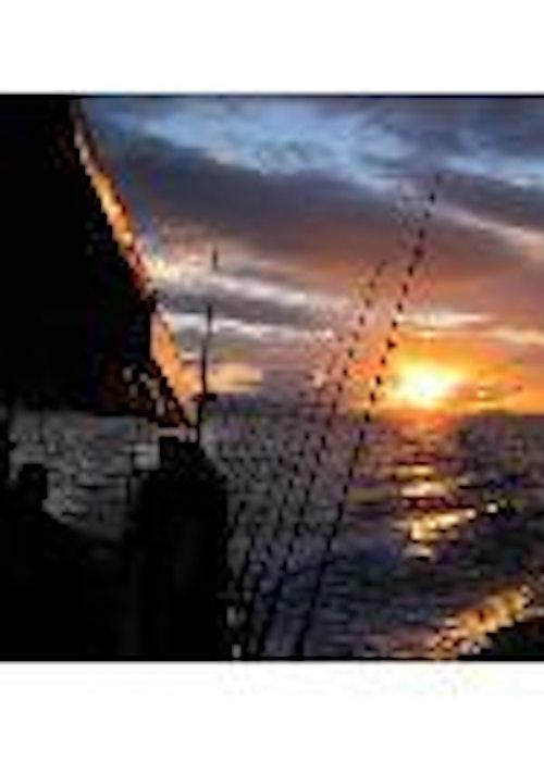 Tauranga Marine Charters