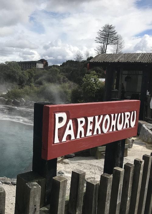 Corporate Tours Tauranga