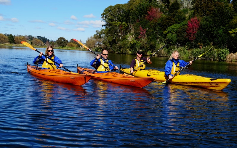 Wairoa River Tour