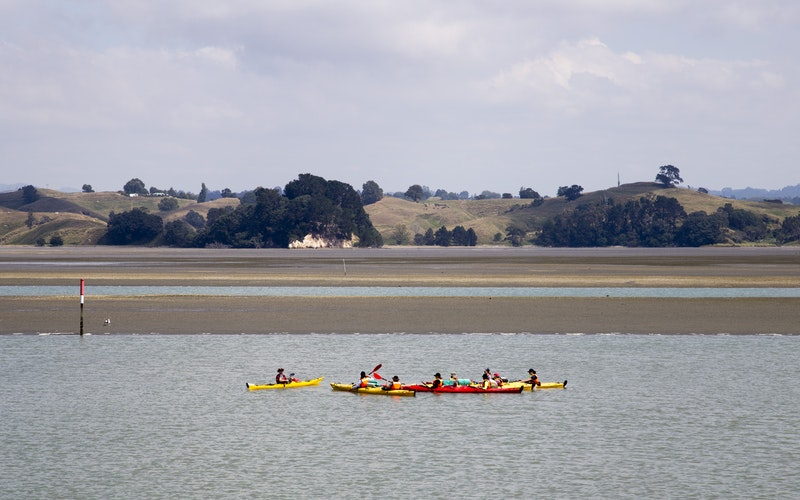 Kayaking on the Ohiwa Harbour