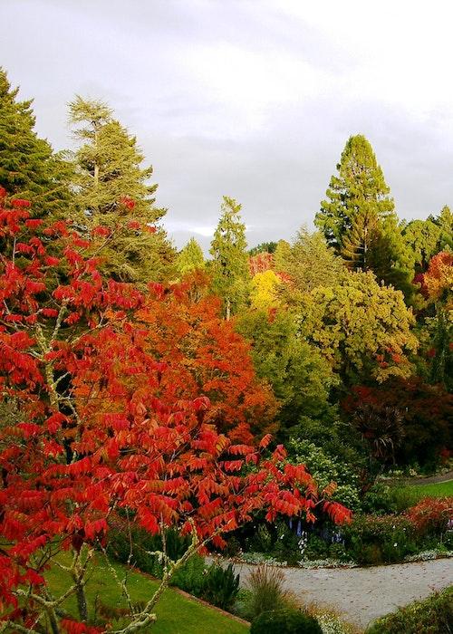 Eastwoodhill Arboretum